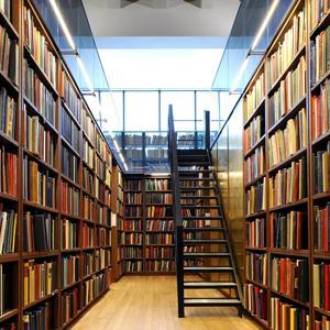 Библиотеки Злынки