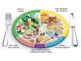 Кристалл Детский Реабилитационно-Оздоровительный центр ГПО Кристалл - иконка «питание» в Злынке